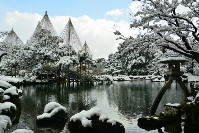 兼六園雪吊り